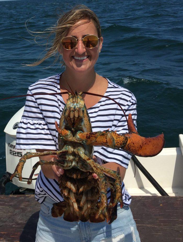 Lobster Tour Hampton Nh