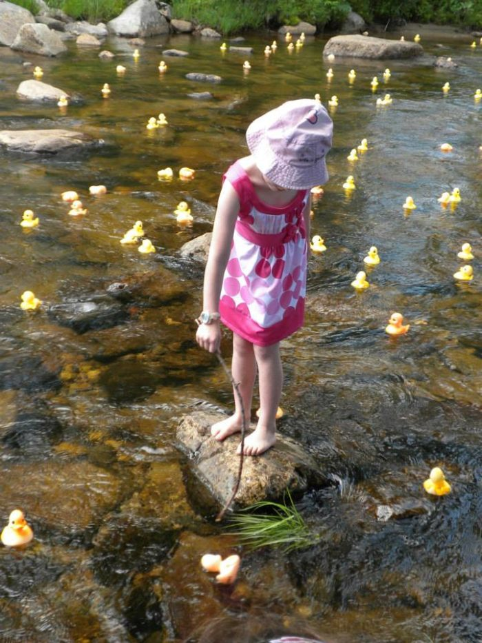 The Wildquack Duck Race In Jackson Is The Quirkiest Event In New ...