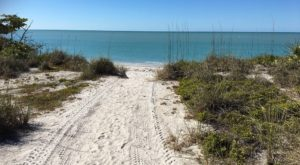 You'll Love This Secluded Florida Beach With Miles And Miles Of White Sand