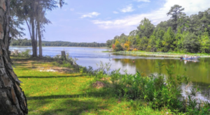 9 Lesser-Known State Parks In Alabama That Will Absolutely Amaze You