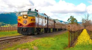There's A Tequila Train In California And You'll Want To Climb Aboard