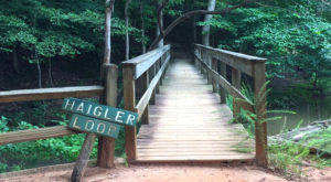 9 Easy And Beautiful Spring Hikes Everyone In South Carolina Will Love