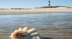 The One Of A Kind Ferry Boat Adventure You Can Take In North Carolina