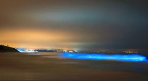California's Bizarre Glowing Waves Need To Be Seen To Be Believed