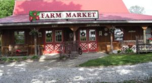The Quaint Country Farm Near Pittsburgh Where You Can Pick Your Own Fruit All Summer Long