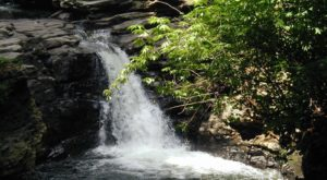Your Kids Will Love This Easy 2-Mile Waterfall Hike Right Here In Pennsylvania