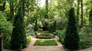 This Secret Garden Hiding In Plain Sight In North Carolina May Be Your New Favorite Escape