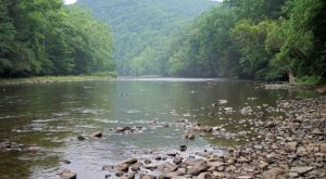 These 11 Waterfront Spots Are The Best Places To Fish In All Of West Virginia