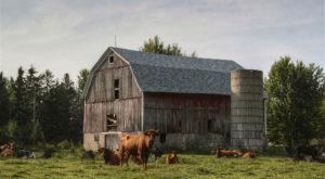 14 Dead Giveaways You Grew Up On A Wisconsin Farm