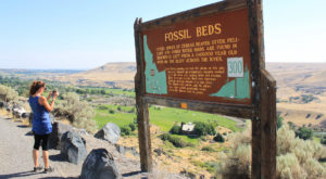 This Fascinating Prehistoric Destination In Idaho Is Perfect For Your Next Outing