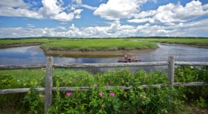 There's An Incredible Marsh Hiding In Maine And It's The Perfect Spot For A Day Trip
