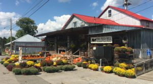 You'll Want To Visit This Cute Little Town Just Outside Of Nashville Before It Becomes Too Popular