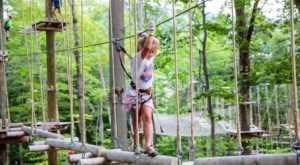 The Treetop Trail That Will Show You A Side Of Vermont You've Never Seen Before