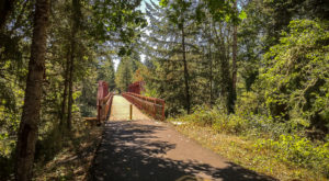 Take This Covered Bridge Hike In Oregon For An Unforgettable Adventure