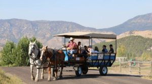 Take A Scenic Wagon Ride Through The Idaho Mountains For An Unforgettable Experience