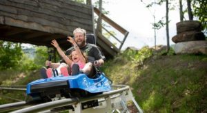 Ride Through The Woods Like Never Before On This Incredible Mountain Coaster In Vermont