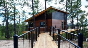 Sleep Underneath The Forest Canopy At This Epic Treehouse In Wyoming