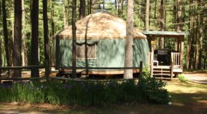 Stay In This Unparalleled Pennsylvania Yurt For A Night Of Pure Magic
