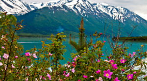 9 Glorious Campgrounds In Alaska Where No Reservation Is Required