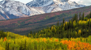 Take This Gorgeous River Valley Trail In Alaska For The Ultimate Summer Adventure