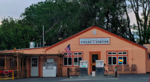 The Tiny Cafe In The Middle Of Nowhere That Serves The Best Milkshakes In Oregon