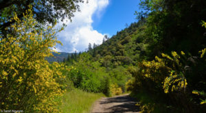 This One Hike In Northern California Has A Little Bit Of Everything And You Need To Do It