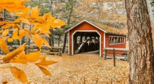 10 Out-of-This-World Hikes In Connecticut That Lead To Fairytale Footbridges