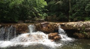 You'll Want To Spend All Day At This Waterfall-Fed Pool In Virginia