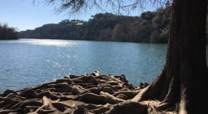 This Quaint Little Trail Is The Shortest And Sweetest Hike In Austin