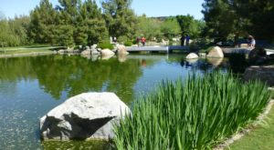 The Secret Garden Hike In Arizona Will Make You Feel Like You're In A Fairytale