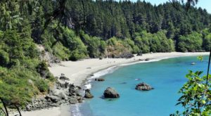 This Enchanting Forest Hike In Northern California Leads You To A Stunning Secret Beach