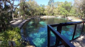 You'll Want To Spend All Day At This Waterfall-Fed Pool In Florida