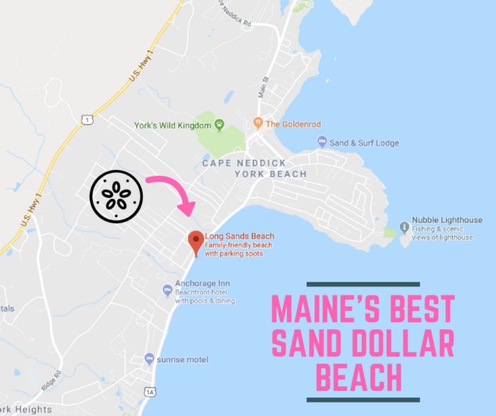 Long Sands Beach The Amazing Sand Dollar Beach Every Mainer Will