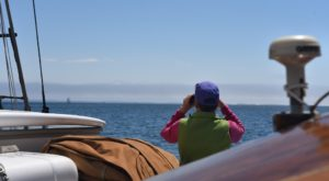 You've Never Had A Vacation Like This Overnight Boat Excursion In Maine