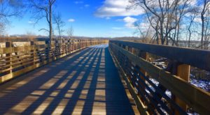 This Wisconsin Trail Has Endless Boardwalks And You'll Want To Explore Them All