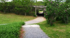 The Secret Garden Hike In Vermont Will Make You Feel Like You're In A Fairytale