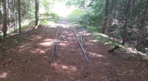 Follow This Abandoned Railroad Trail For One Of The Most Unique Hikes In Maine