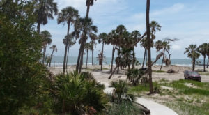 South Carolina's Most Visited State Park Has A Beachside Campground That's The Most Beautiful Around