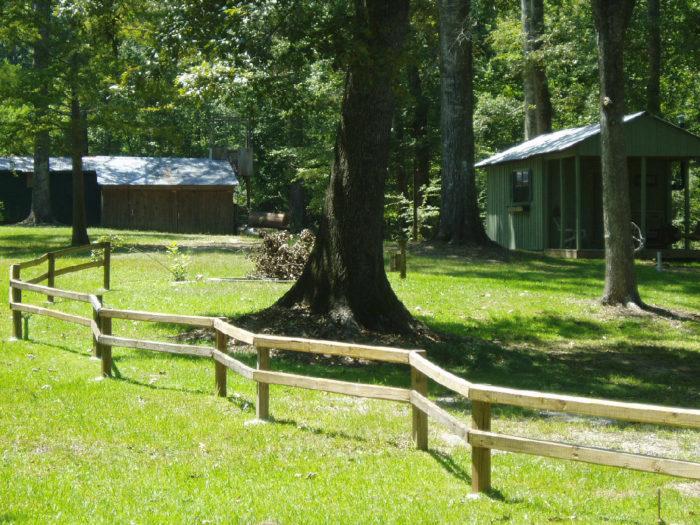 6 Hidden Campgrounds In Louisiana To Sneak Away To When