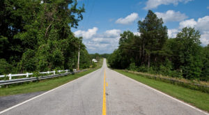 Take A Drive Down One Of South Carolina's Oldest Roads For A Picture Perfect Day