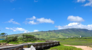 7 Boardwalks In Hawaii That Will Make Your Summer Awesome