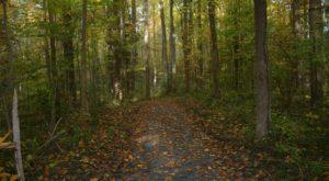 The Blackbird Creek Murder Mystery In Delaware Still Baffles People Today