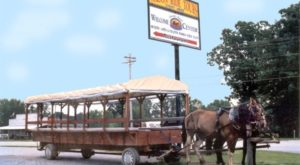 Take A Trip Back In Time With This Amish Country Wagon Tour Just Outside Of Nashville