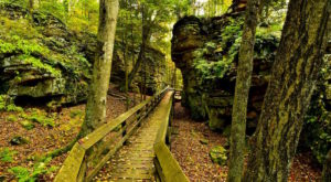 11 Totally Kid-Friendly Hikes In West Virginia That Are 1 Mile And Under