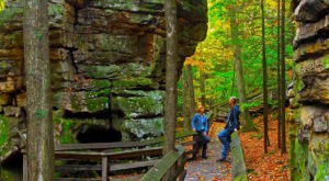 This West Virginia Park Has Endless Boardwalks And You'll Want To Explore Them All