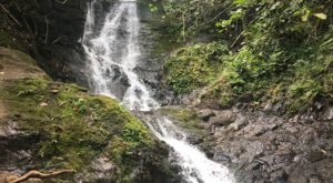 Your Kids Will Love This Easy 1.5-Mile Waterfall Hike Right Here In Hawaii