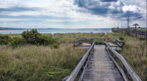 The Lesser-Known State Park In Virginia That Has Amazing Beachfront Camping