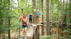 The Treetop Trail That Will Show You A Side Of Nebraska You've Never Seen Before