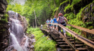 This Beautiful Boardwalk Trail In New Hampshire Is The Most Unique Hike Around