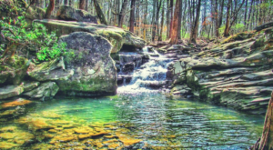 Take A Hike Through This Magnificent Oasis In Alabama For An Unforgettable Outdoor Adventure